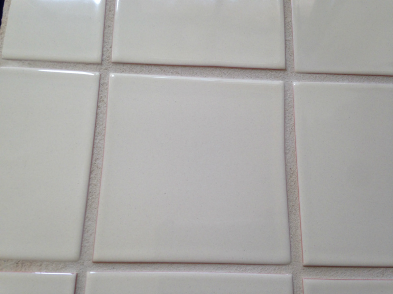 Cleaned grout and shower tiles